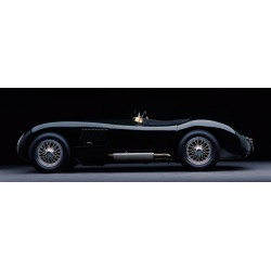 1951 Jaguar C-Type,Don Heiny,HandMade ReadyToHang product,Canvas or Poster,from Stampeequadri