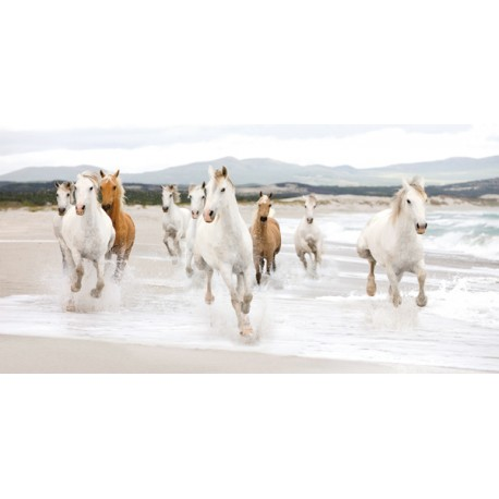 Horses On The Beach-Zero Studio, Bellissimo Quadro su Tela Canvas con Spiaggia e Cavalli in Corsa