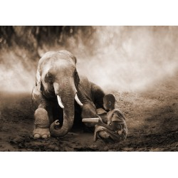 "Marc Moreau ""Together"" Art Poster,Canvas o Quadro Finito Artigianale con elefante e bambino"