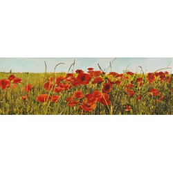 "Luca Villa ""Field of Poppies"" -Home Decor Best Seller Image with poppy field, low and wide format"