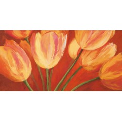 "Silvia Mei ""orange tulips"""