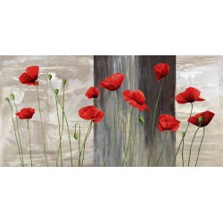 "Jenny Thomlinson ""country poppies""- Quadro Floreale con papaveri su canvas di cotone al 100%"