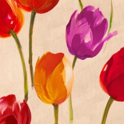 Tulip Funk - Luca Villa colored Tulips on high quality print