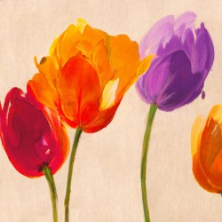 Tulip & Colors -Luca Villa colored Tulips on high quality print