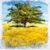 "Adelio Bonacina""Quiete d'Estate"".Author's canvas print stretched on woodframe with fascinating tree image"