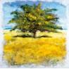 """Adelio Bonacina""""Quiete d'Estate"""" quadri moderni 100x100 e altre misure con albero"""
